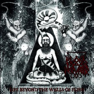 Black Mass Pervertor - Life Beyond the Walls of Flesh (2018)